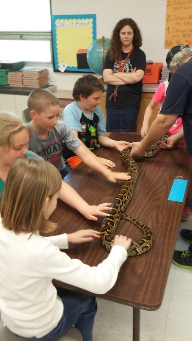 3rd Grade Snake Project