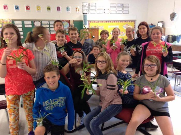 5th Graders with their spider plants