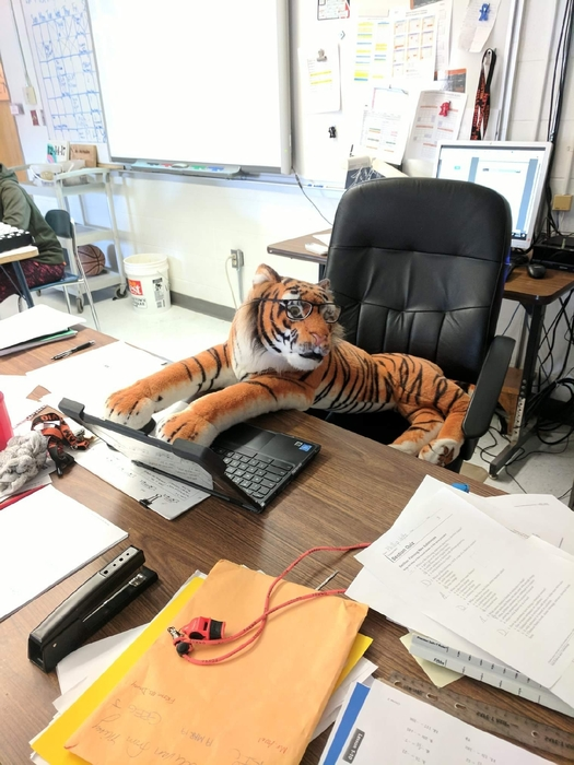 We love ALL of our hardworking Tigers!