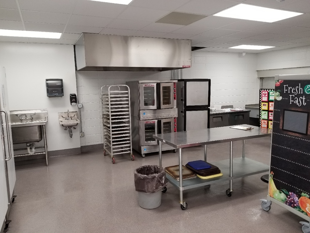 Renovation of Elementary Kitchen