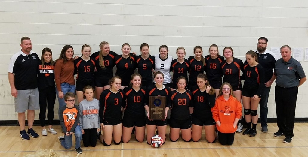 Volleyball going to State